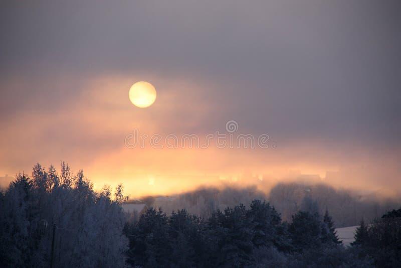 L'hiver froid images libres de droits
