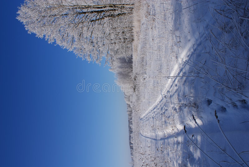 l'hiver froid photographie stock
