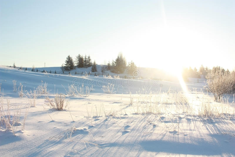 L'hiver givré images libres de droits