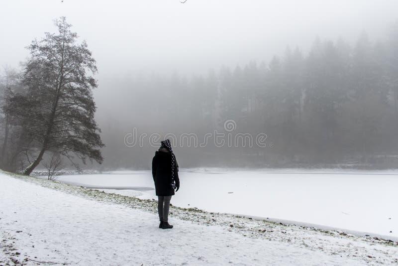 L'hiver isolé de chemin et d'arbres de marche de fille se demandent la terre image libre de droits