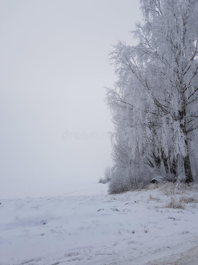 L'hiver norvégien photographie stock