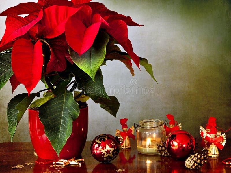 L'hiver rose, bougie et décorations de Noël image stock