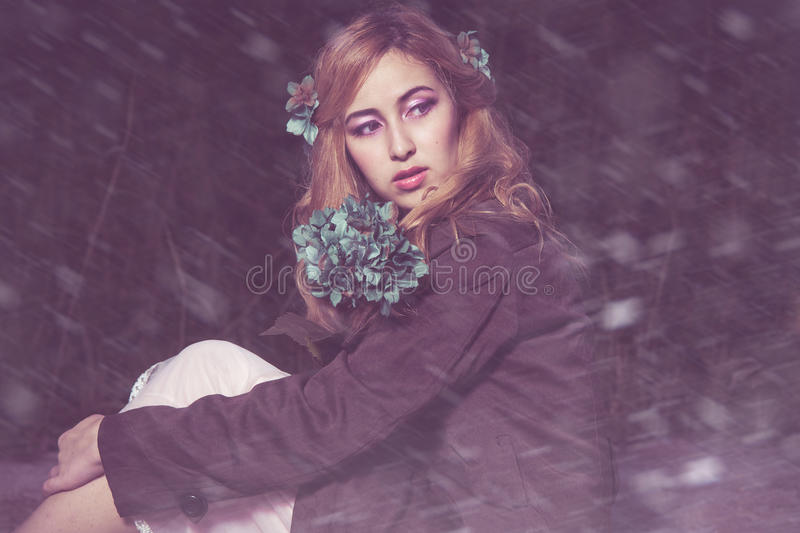 L'hiver silencieux image stock