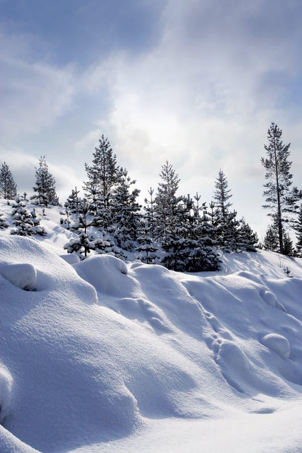 L'hiver suédois images libres de droits