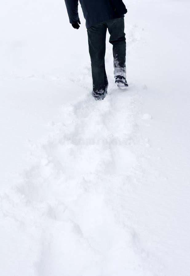L'hiver : traces dans la neige image stock