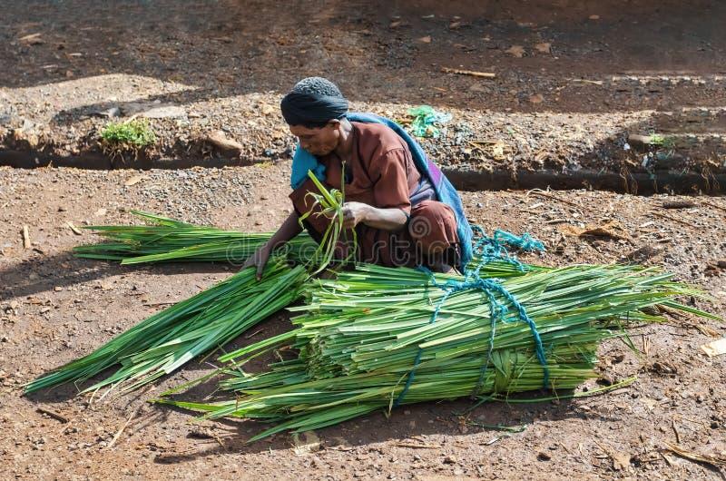 L'homme éthiopien vend la canne à sucre sur la rue image stock