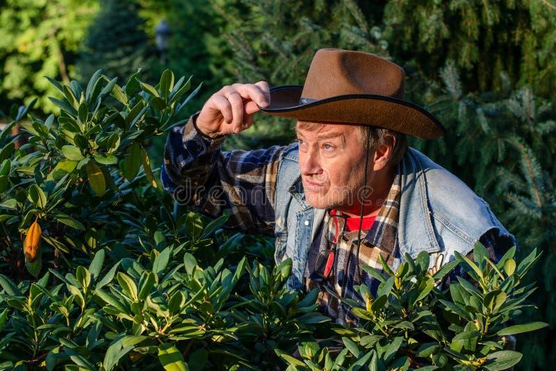 L'homme adulte supérieur ou un agriculteur, dans un chapeau de cowboy brun, regarde o images stock