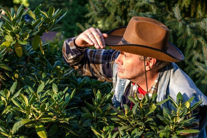 L'homme adulte supérieur ou un agriculteur, dans un chapeau de cowboy brun, regarde o photographie stock libre de droits