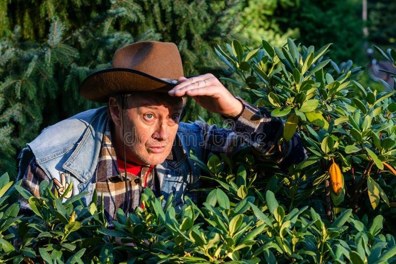L'homme adulte supérieur ou un agriculteur, dans un chapeau de cowboy brun, regarde o photo libre de droits