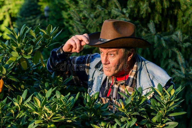 L'homme adulte supérieur ou un agriculteur, dans un chapeau de cowboy brun, regarde o photographie stock