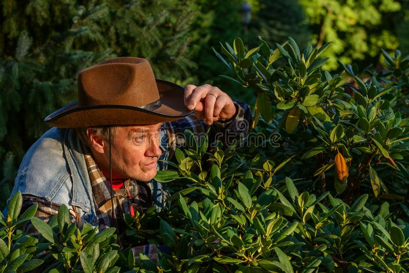 L'homme adulte supérieur ou un agriculteur, dans un chapeau de cowboy brun, regarde o photos libres de droits
