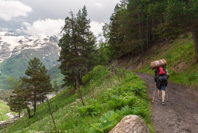 L'homme avec des poteaux de sac à dos et de trekking monte la route de montagne par des montagnes de Caucase de forêt, gorge Ters image stock