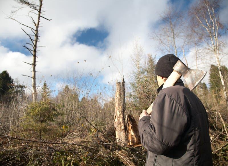 L'homme avec une hache regarde dégringolé en bas du bois photographie stock