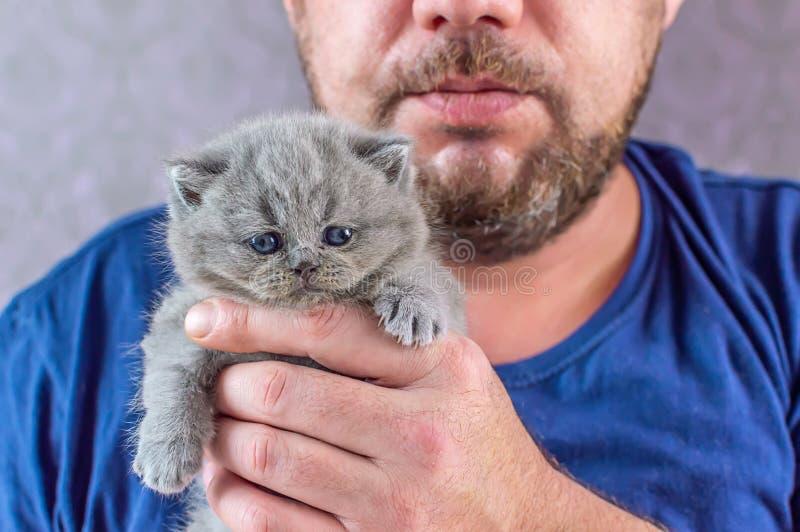 L'homme barbu embrasse un petit chaton images stock