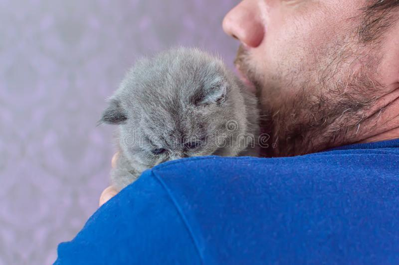 L'homme barbu embrasse un petit chaton image stock