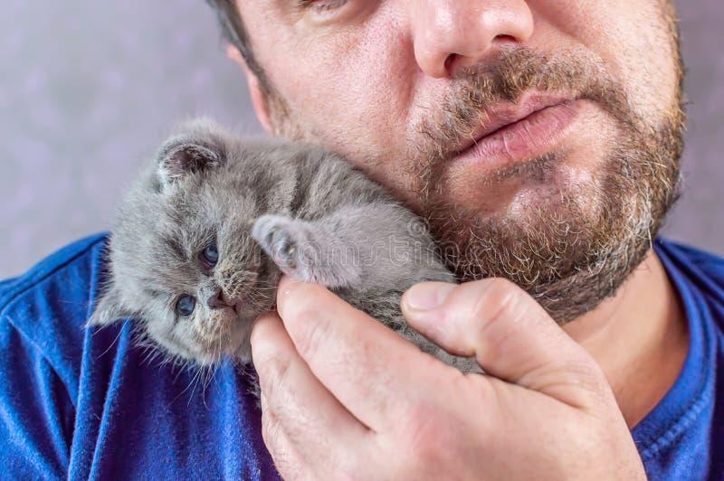 L'homme barbu embrasse un petit chaton photo stock