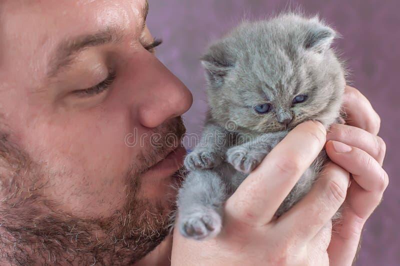 L'homme barbu embrasse un petit chaton photos stock
