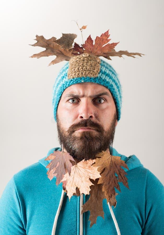 L'homme barbu se préparent au jour de remise d'automne Homme de mode Étonnez l'homme de hippie jouant avec des feuilles et regard photo stock
