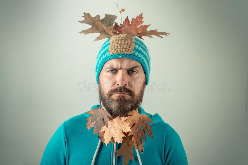 L'homme barbu se préparent au jour de remise d'automne Homme de mode Étonnez l'homme de hippie jouant avec des feuilles et regard photo libre de droits