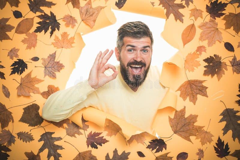 L'homme barbu sont prêt pour la vente d'automne Étonnez l'homme jouant avec des feuilles et regardant l'appareil-photo photo libre de droits