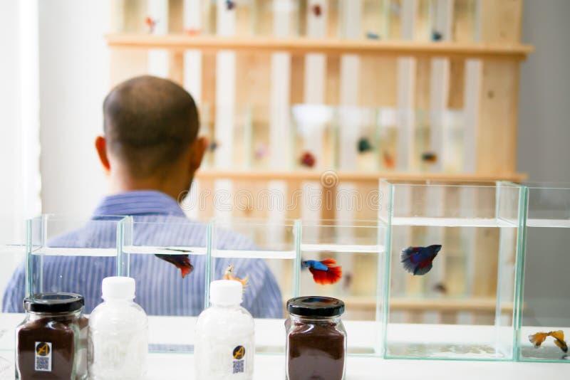 L'homme bel asiatique prend une photo dans une boutique de poissons photographie stock
