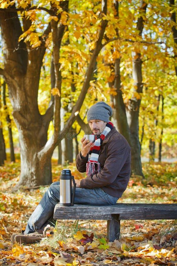 L'homme boit du thé en stationnement d'automne photos stock