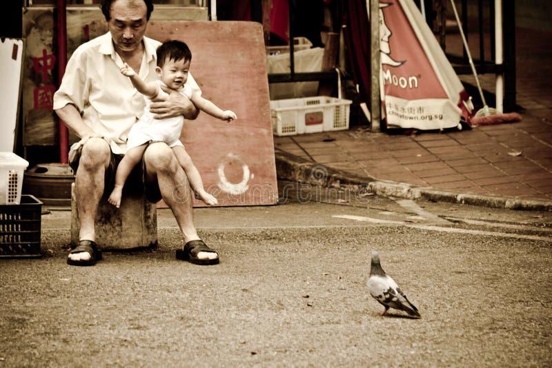 L'homme chinois porte un enfant qui est excité par un oiseau photos libres de droits