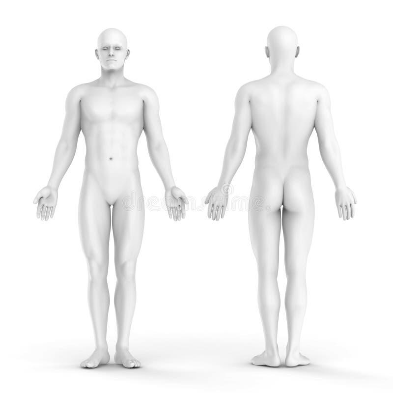 l'homme 3d blanc - affrontez et vue arrière illustration libre de droits