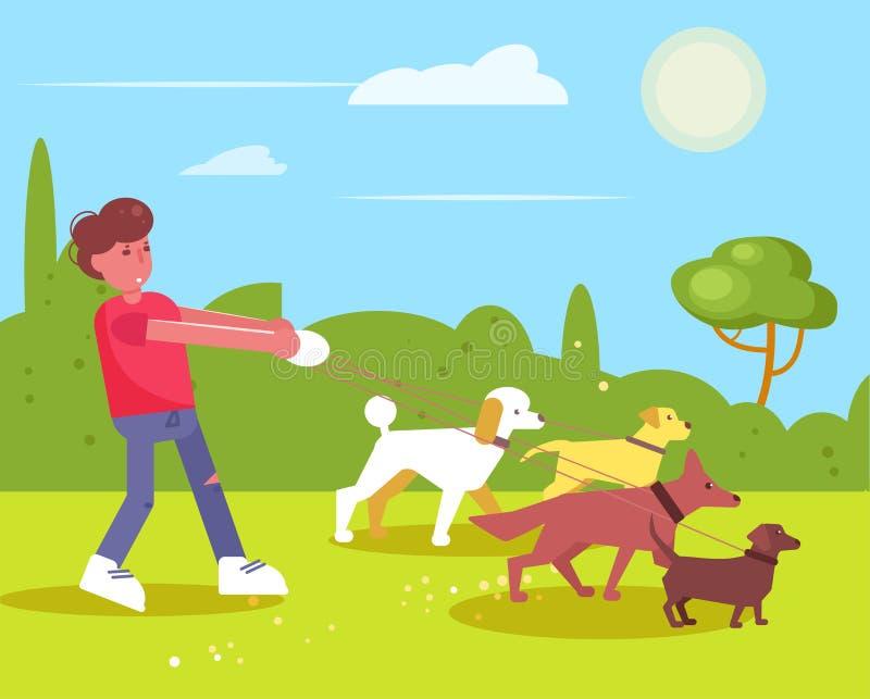 L'homme de marche de services de chien marche avec quatre chiens illustration stock