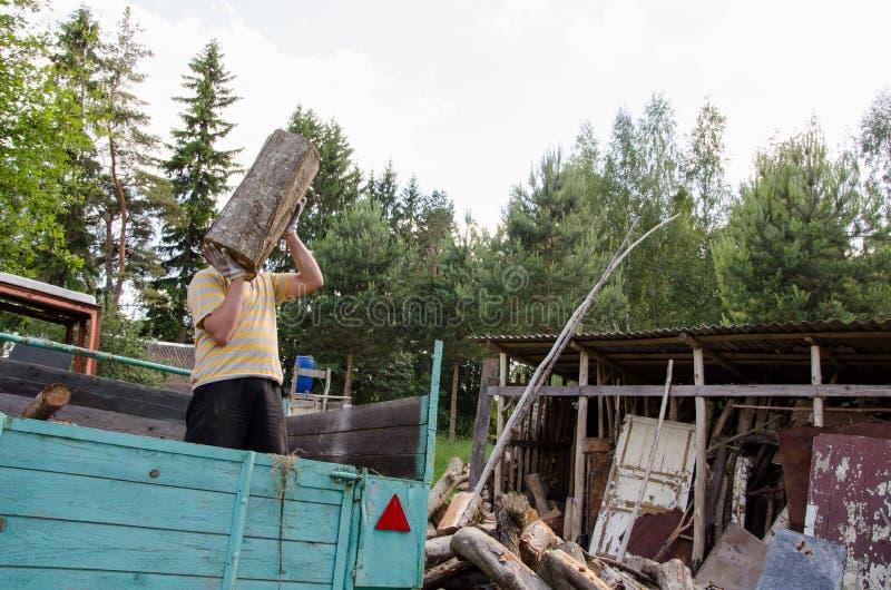L'homme de travailleur déchargent le bois de chauffage de rondins d'arbre de la remorque image stock