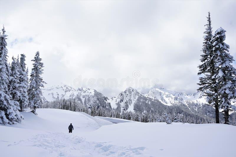 L'homme entre loin dans la région sauvage neigeuse montagneuse photo libre de droits
