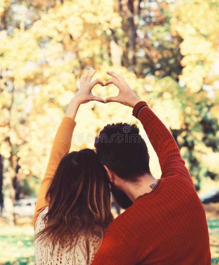 L'homme et la femme ont tourné vers l'arrière sur le fond d'arbres d'automne image stock