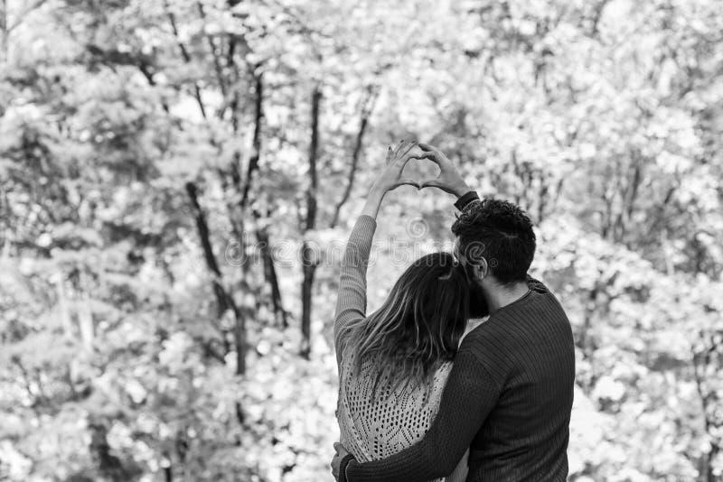 L'homme et la femme ont tourné vers l'arrière sur le fond d'arbres d'automne images stock