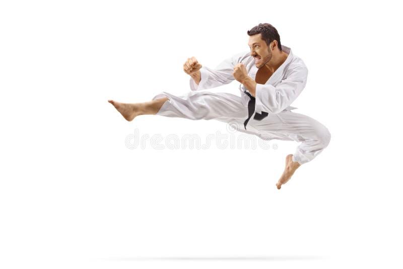 L'homme exécutant le vol donnent un coup de pied en arts martiaux photographie stock
