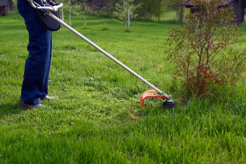 L'homme fauche une herbe photo libre de droits