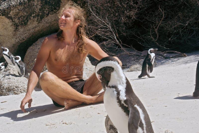 L'homme heureux le prend un bain de soleil tout en se reposant parmi des pingouins photographie stock libre de droits