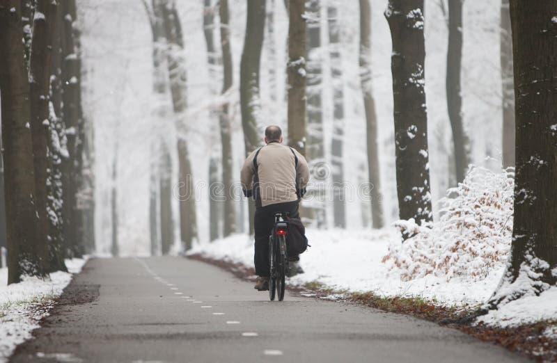 L'homme monte la bicyclette dans la neige a couvert la forêt près d'Utrecht en Hollandes image libre de droits