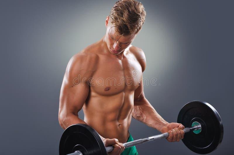 L'homme musculaire bel faisant le biceps se courbe avec le Barbell photographie stock libre de droits