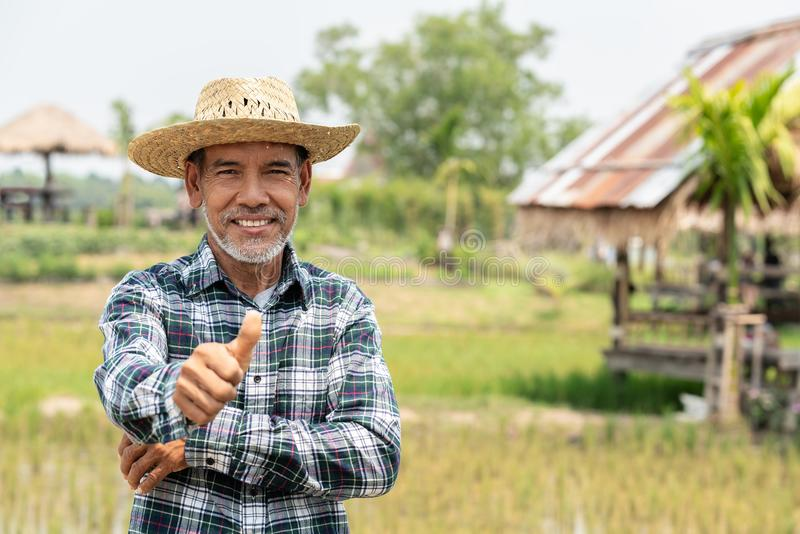 L'homme plus âgé mûr heureux de portrait sourit Vieil agriculteur supérieur avec le pouce de barbe blanche vers le haut de se sen image stock
