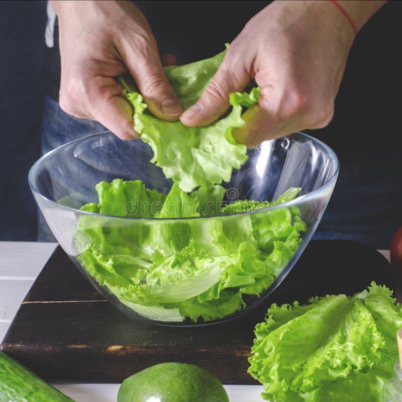 L'homme pr?pare la salade verte de la laitue romaine Concept sain de nourriture photo libre de droits
