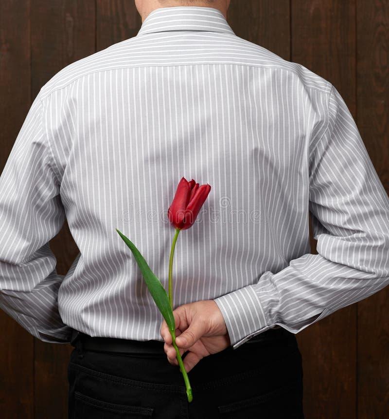 L'homme se cache derrière une fleur rouge photos libres de droits