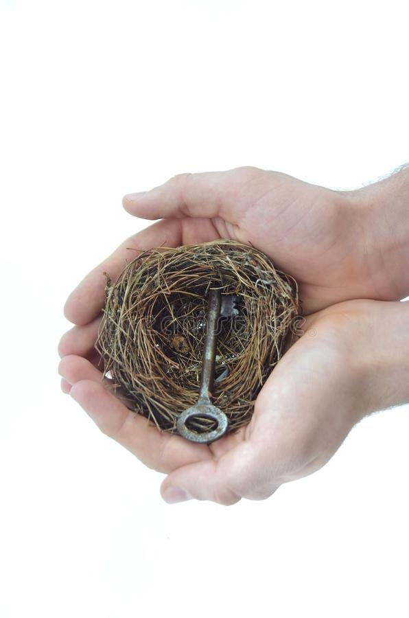 L'homme tient le nid dans des mains photos libres de droits