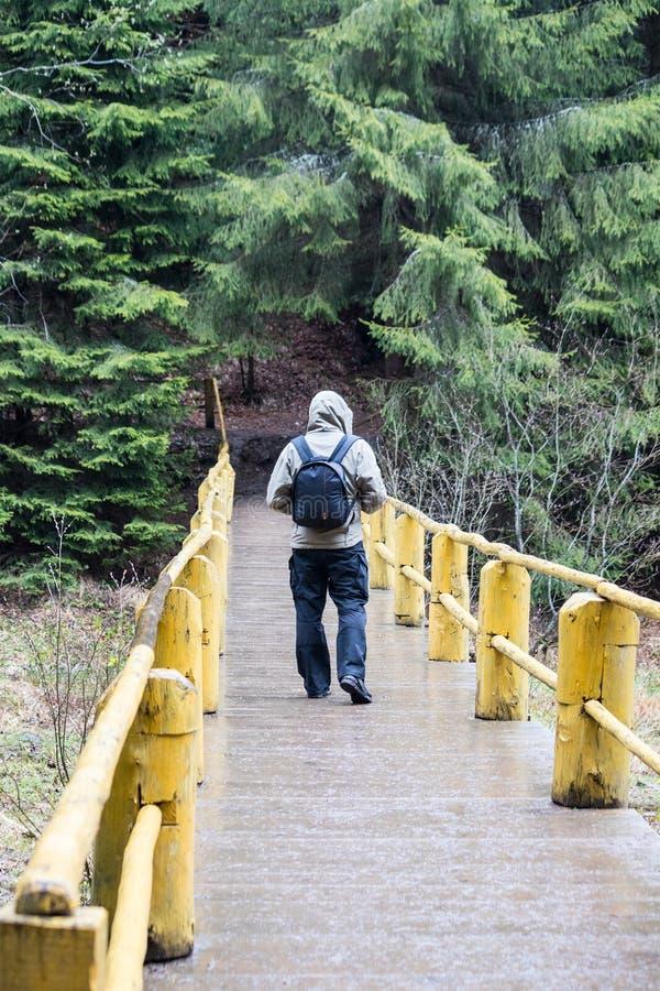 L'homme, un voyageur marche à travers le pont à la forêt photos stock