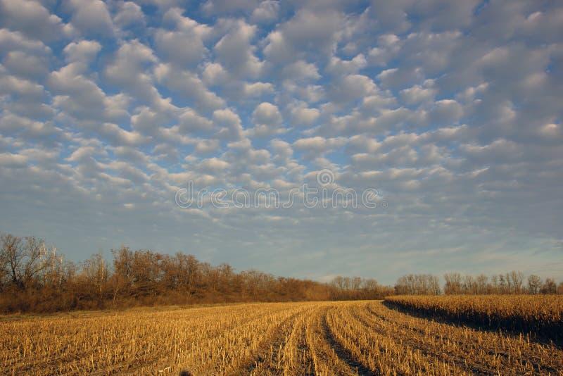 L'horizontal rural image libre de droits
