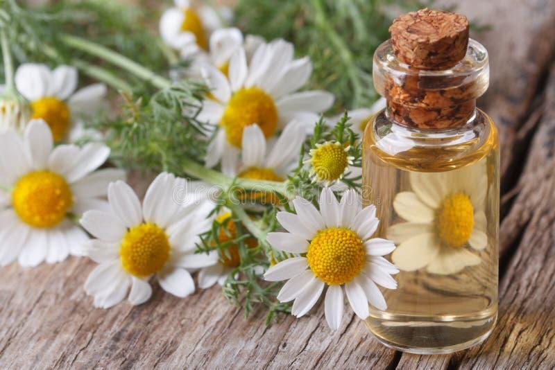 L'huile de la camomille fleurit dans un macro de bouteille en verre image stock
