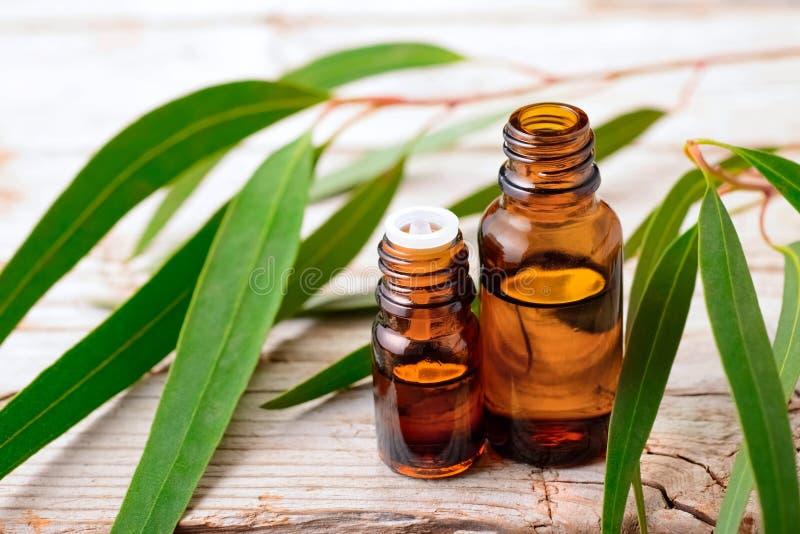 L'huile essentielle d'eucalyptus et l'eucalyptus frais part sur la table image libre de droits