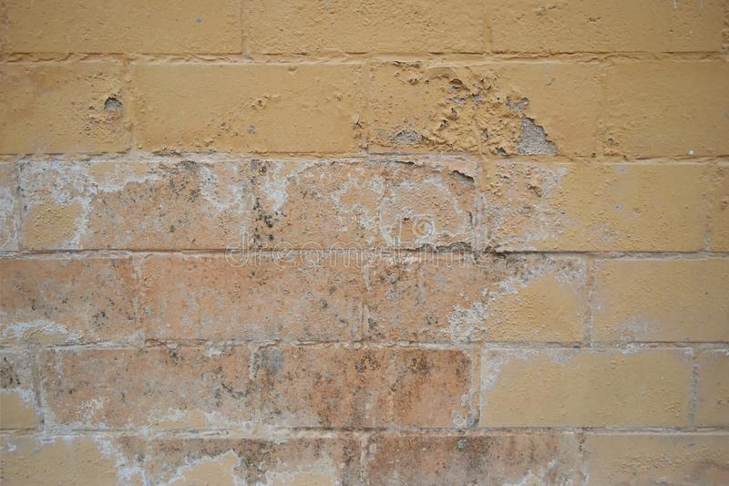 L'humidit? excessive peut causer le mur de peinture de moule et d'?pluchage tel que des fuites d'eau de pluie ou des fuites de l' photo libre de droits