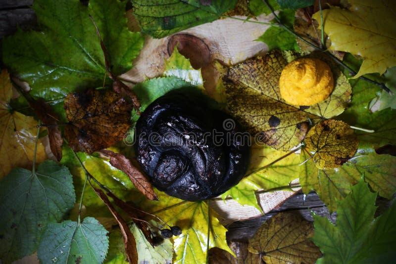 L'humus nero della carota e della ciambellina salata per Halloween fa un spuntino, alimento creativo fotografia stock