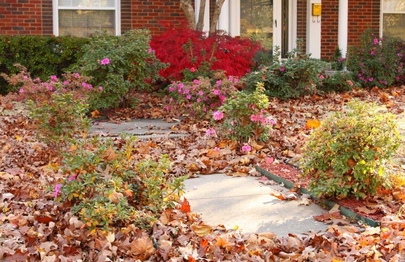 L'iarda della casa graziosa che ha bisogno del yardwork - caduta va in fiori e sul marciapiede immagine stock