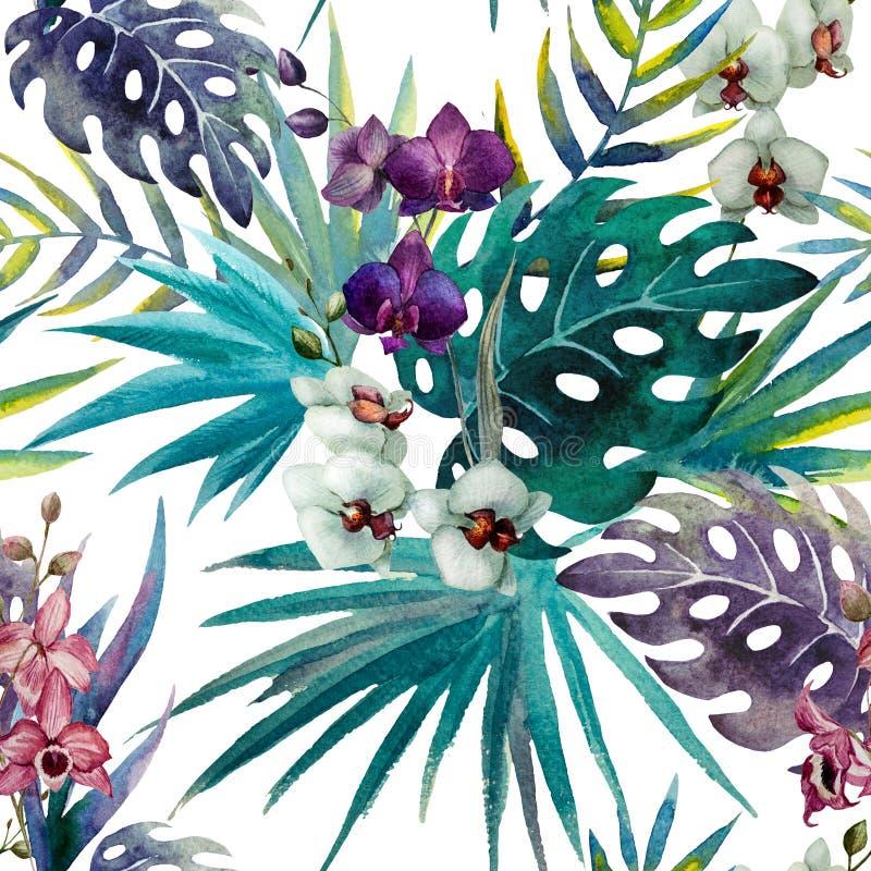 L'ibisco dell'orchidea del modello lascia i tropici dell'acquerello royalty illustrazione gratis